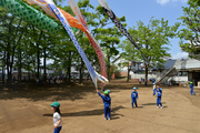 harunokatudou14.jpg